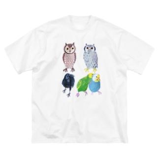 とりいろいろとり Big Silhouette T-Shirt