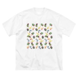 まめるりはことりのたっぷりウロコインコちゃん【まめるりはことり】 Big Silhouette T-Shirt