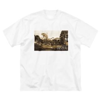 ウェールズ1-taisteal-タシテル- Big silhouette T-shirts