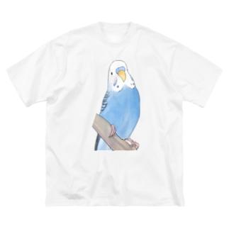 セキセイインコちゃんと止まり木【まめるりはことり】 Big silhouette T-shirts