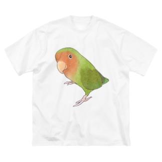 見つめるコザクラインコちゃん【まめるりはことり】 Big silhouette T-shirts