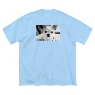 akane_artのモノクロチワワ(おすまし) Big silhouette T-shirts