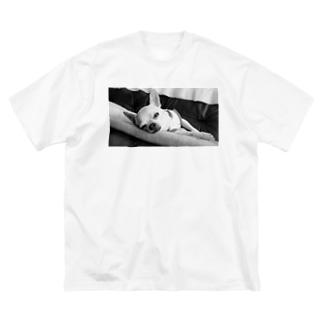 モノクロチワワ(アンニュイ2) Big silhouette T-shirts
