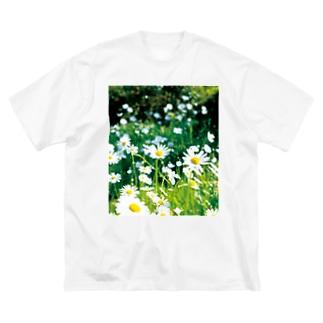 癒しの風景(シャスタデイジー) Big silhouette T-shirts
