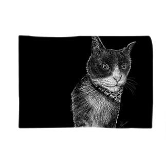 HolsteinCat-BK Blankets