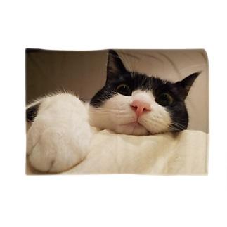 白黒ハチワレ猫 カラーver. Blankets