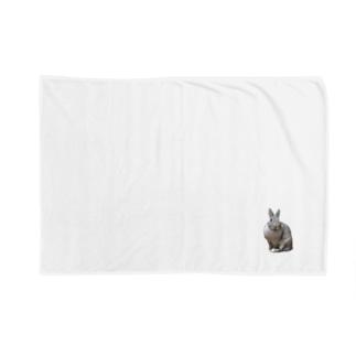 うさぎのミニー Blankets