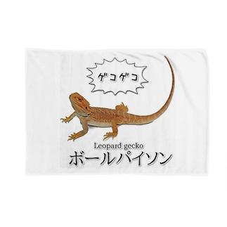 滅裂爬虫類 Blankets