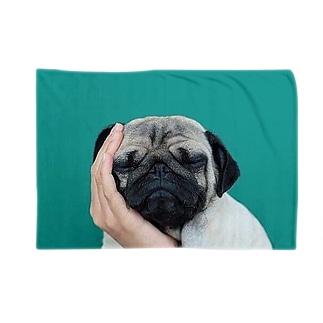 Dog ブランケット