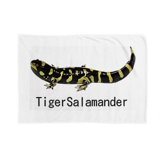 タイガーサラマンダー Blankets
