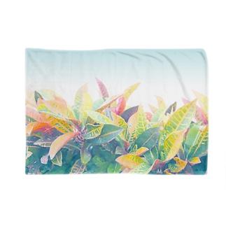 南国の葉っぱ 3🌿 Blankets