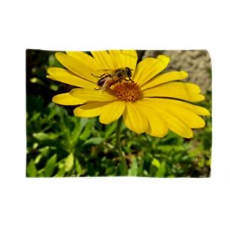 蜂と花 Blankets