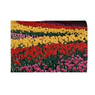 虹色の道 Blankets