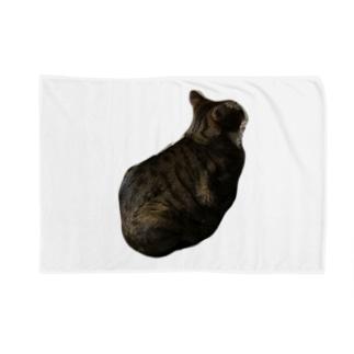 らいちっち Blankets