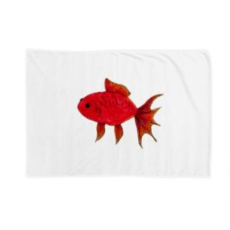 赤い金魚 Blankets