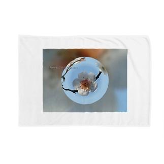 光景 sight737 梅  花 FLOWERS  宙玉(そらたま) Blankets