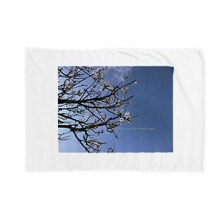 光景 sight738 梅  花 FLOWERS Blankets