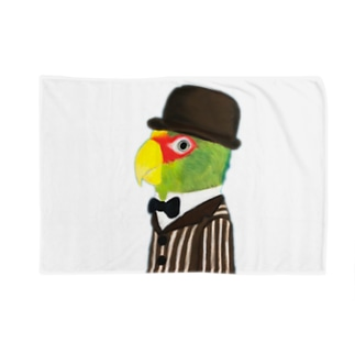 コボウシインコ紳士 背景なし Blankets