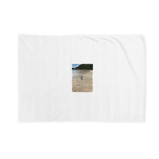 リボンネコの種子島ネコ Blankets