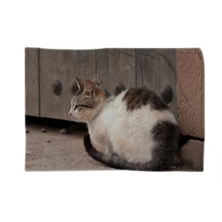 モロッコの猫 Blankets