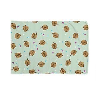ホーランドロップ(トート) Blankets