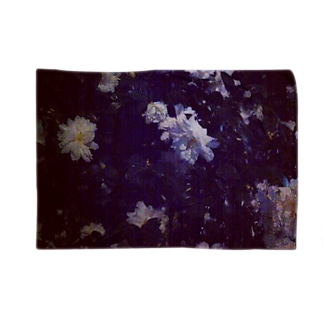 白い花 Blankets