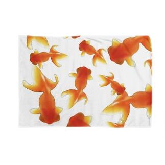 金魚すくい Blankets
