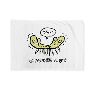 枯れてるゼニゴケちゃん Blankets