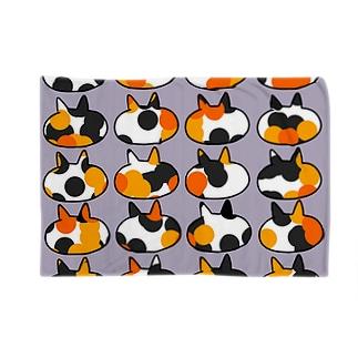三毛猫 Blankets