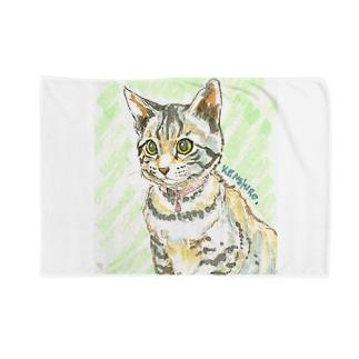 子猫ケンケン Blankets