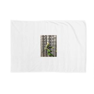 ピコちゃん(性別不明期) Blankets