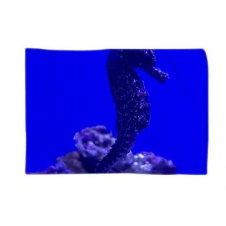 Seahorse  〜タツノオトシゴ〜 Blankets