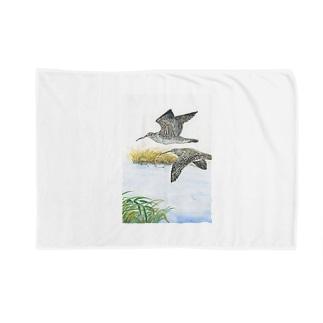 チュウシャクシギ Blankets
