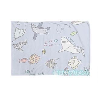 水槽の中だけがこの魚生 Blankets