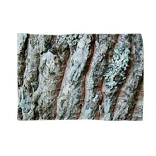 クヌギ樹皮 Blankets