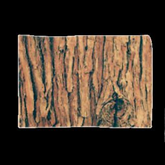 ツバサネコ@転生のスギ樹皮 Blankets