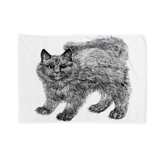 ふわふわの仔猫 Blankets