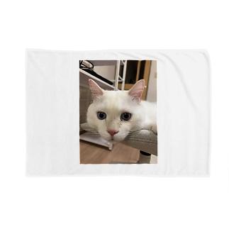 メイヨかいちょうそら Blankets