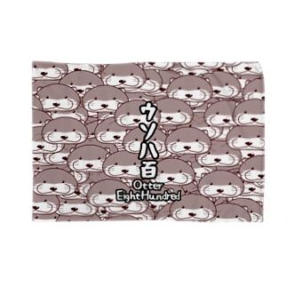 OtterEightHundred Blankets