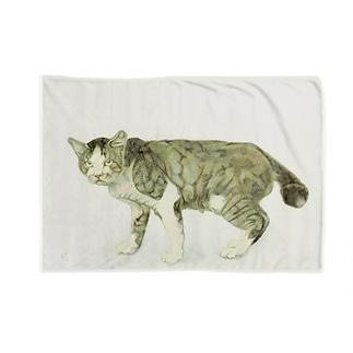 立ち睨む猫 Blankets