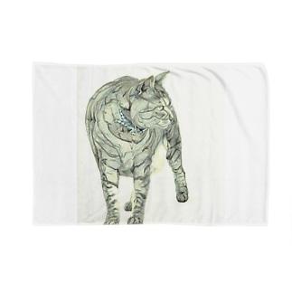 立ち竦む猫 Blankets