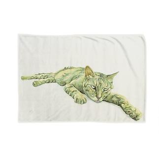 寝そべる猫 Blankets