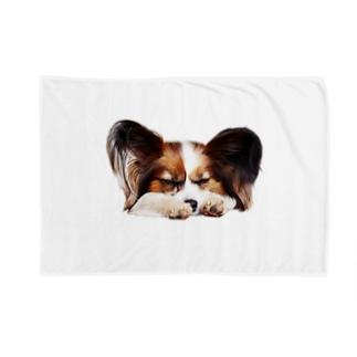 パピヨン(ランボ) Blankets