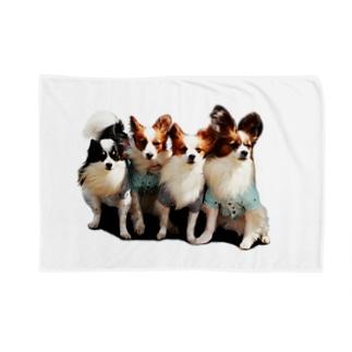 パピヨン(一家) Blankets