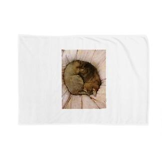 家の猫アンモナイト型 Blankets