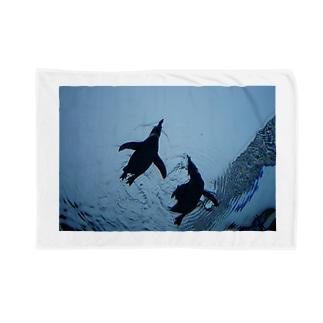 ペンギンたち Blankets