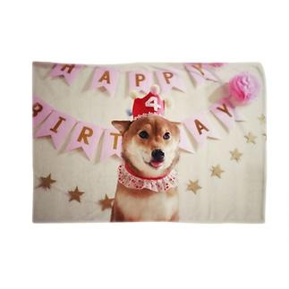 柴犬日向誕生日 Blankets