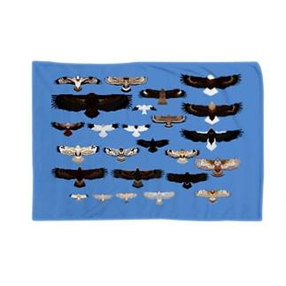 日本の猛禽類ドット Blankets