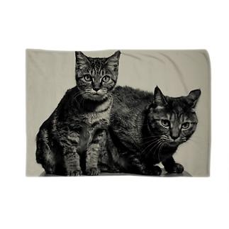 猫ブランケット Blankets