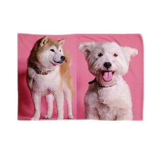 犬ブランケット Blankets